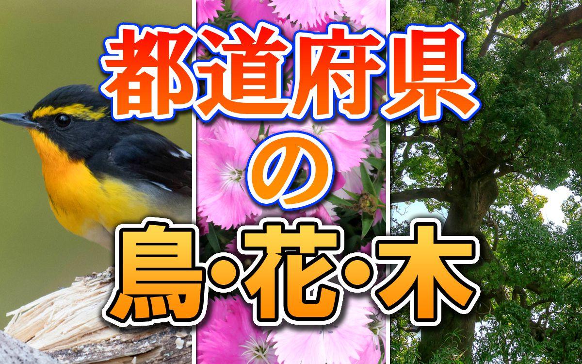 都道府県の鳥・花・木