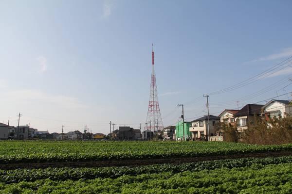 タワーランキング 船橋三山送信所